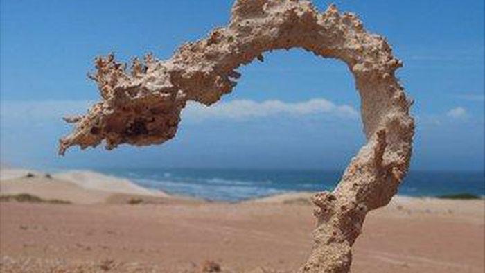 Các tia sét tạo ra những tác phẩm điêu khắc bằng cát tuyệt đẹp - 1