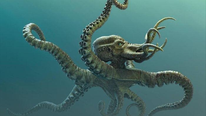 Bí ẩn về sự tồn tại của quái vật Kraken - 1