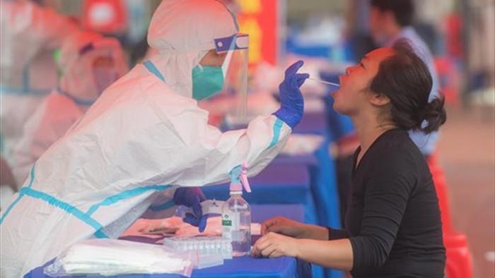 WHO cu chuyen gia toi Trung Quoc dieu tra nguon goc virus SARS-CoV-2 hinh anh 1