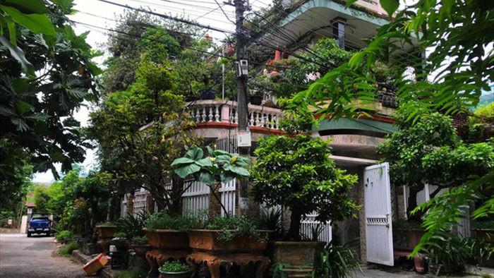 Vườn bonsai ngược trăm triệu đồng trên sân thượng nhà phố ở Quảng Nam - 1