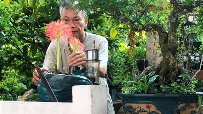 Vườn bonsai ngược trăm triệu đồng trên sân thượng nhà phố ở Quảng Nam - 15
