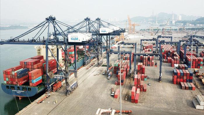 Chuyển container tôm Sài Gòn ra Hà Nội đắt gấp đôi sang Mỹ