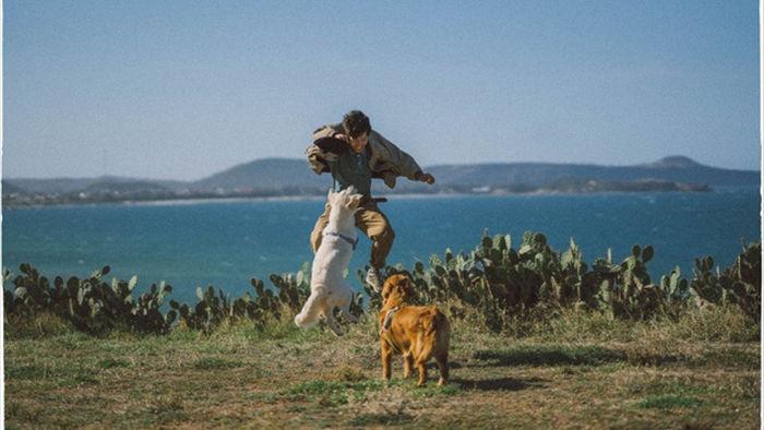 Phú Yên đẹp mê li qua lăng kính của nhiếp ảnh gia trẻ và 2 chú chó cưng - 2