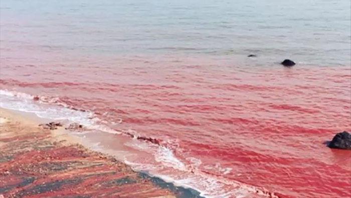 Clip: Sóng đánh đỏ ngầu như máu ở vùng biển kỳ lạ bậc nhất thế giới, khách du lịch đổ xô tới để tìm hiểu nguyên nhân - Ảnh 2.