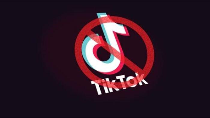 Vì sao Mỹ quyết diệt TikTok? - 1