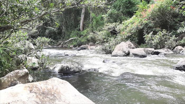 Say đắm với vẻ đẹp của thác Kon Bông giữa rừng xanh - 6
