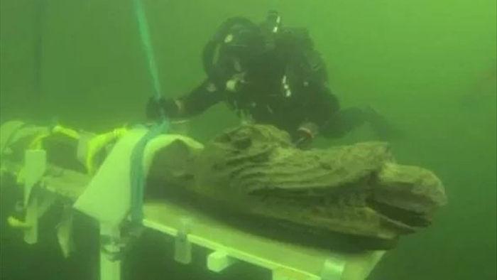 Phát hiện kinh ngạc về xác tàu đắm quái vật biển 500 năm trước vừa được tìm thấy - 1