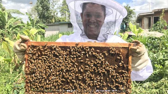 Ong làm mật như thế nào? - 2