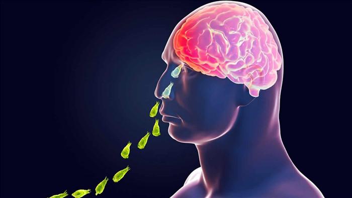 Cậu bé 13 tuổi tử vong vì nhiễm amip ăn não hiếm gặp tại Mỹ - 1