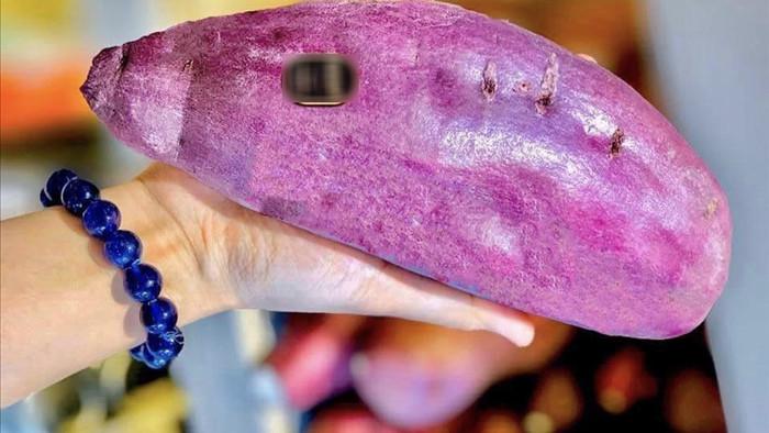 Giật mình hơn nửa triệu đồng/cân khoai lang xách tay từ Nhật - 1