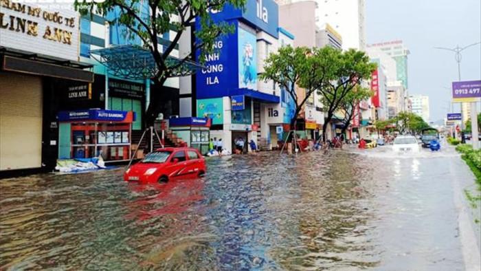 Bão số 5 đổ bộ, nhiều tuyến đường Đà Nẵng thành sông, cây ngã rạp - 3