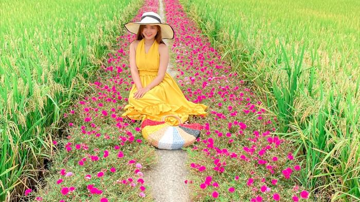 Hướng dẫn tới đường hoa mười giờ đẹp nhất Gò Công - 3