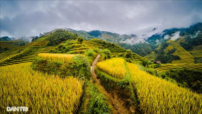 Chạy bộ khám phá vẻ đẹp rực rỡ của những bản làng Mù Cang Chải - 3