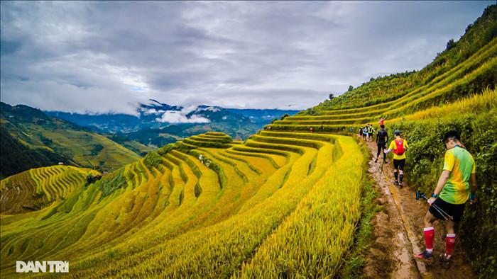 Chạy bộ khám phá vẻ đẹp rực rỡ của những bản làng Mù Cang Chải - 12