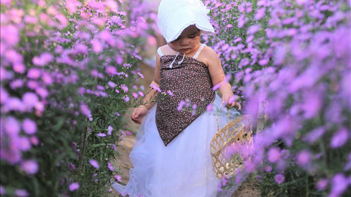 """Náo nức """"check in"""" vườn hoa thạch thảo tím """"lịm tim"""" ở Đà Nẵng - 10"""