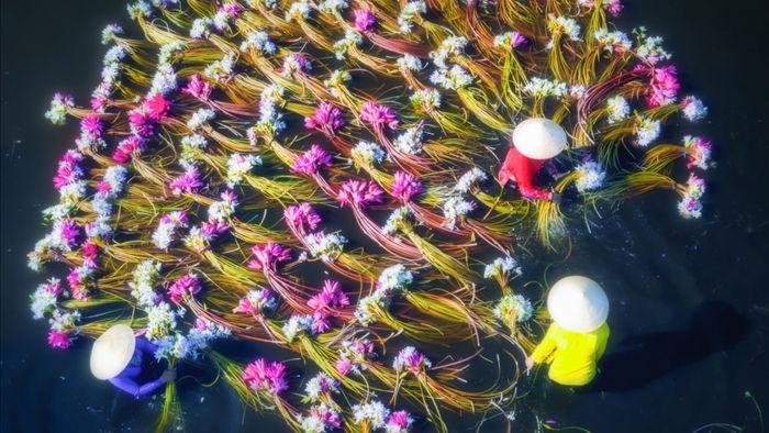 Vẻ đẹp ngoạn mục của Việt Nam nhìn từ trên tầm cao - 14