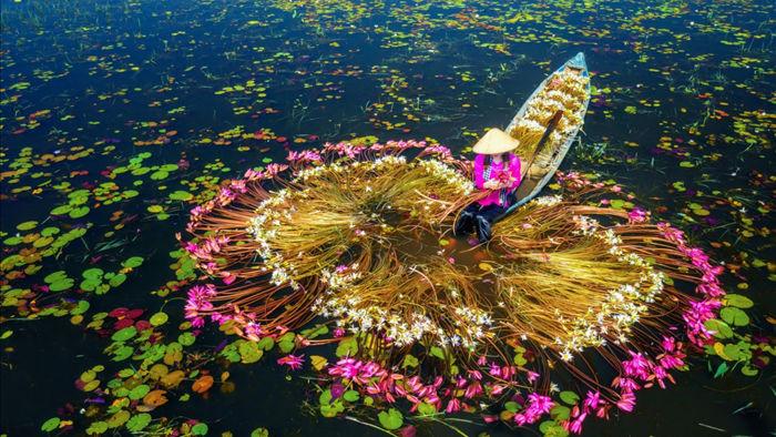 Vẻ đẹp ngoạn mục của Việt Nam nhìn từ trên tầm cao - 15