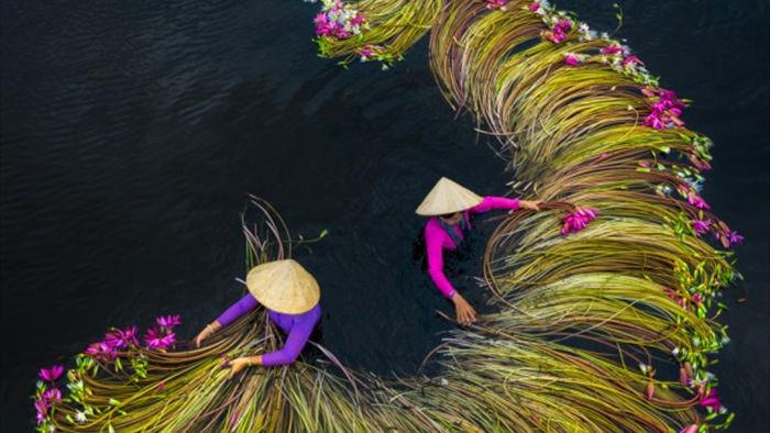 Vẻ đẹp ngoạn mục của Việt Nam nhìn từ trên tầm cao - 4