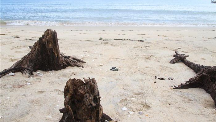 Bờ biển sạt lở nặng sau cơn bão số 5 - 6