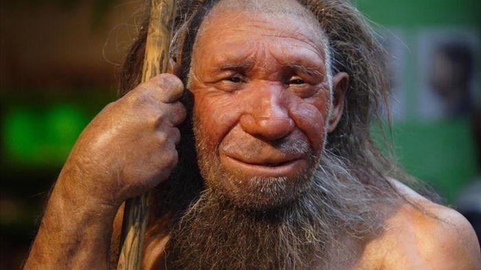 Người thừa hưởng gene người Neanderthal có nguy cơ mắc Covid-19 cao hơn - 1