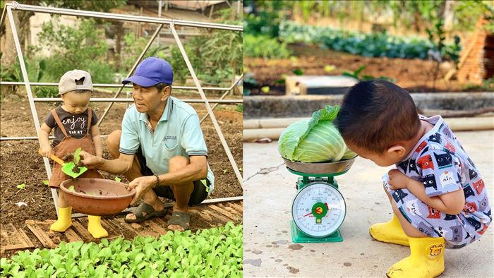 Đã mắt khu vườn 700m2 đủ loại rau củ quả sạch của gia đình ở Đắk Lắk - 7