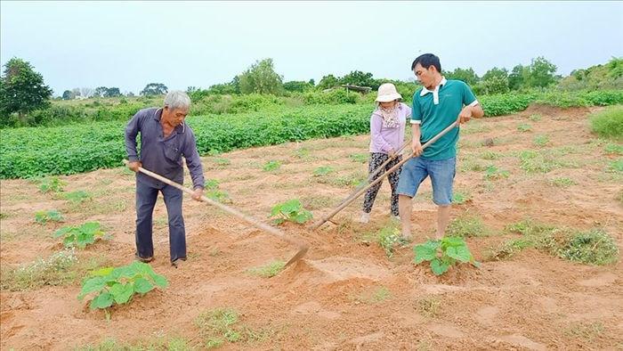 Khu vườn rộng 1.400m2 ngập tràn rau củ quả của ông bố gà trống nuôi con - 1
