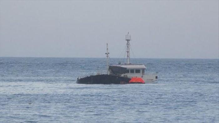 Đi tìm 12 thuyền viên mất tích trong bão số 9, tàu cá Bình Định gặp nạn - 1