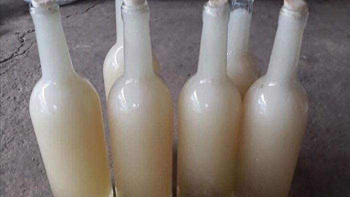 Mật ong trắng như sữa: Mỗi năm chỉ 1 lần, hàng hiếm từ đỉnh núi mây