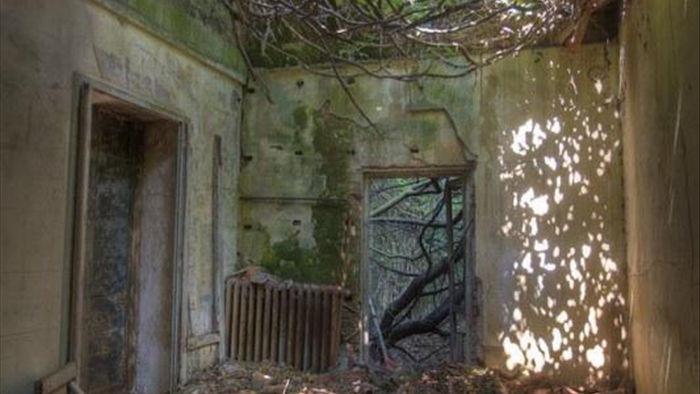 """Ớn lạnh khám phá đảo """"ma ám"""" bị bỏ hoang hàng thập kỷ ở Italia - 4"""