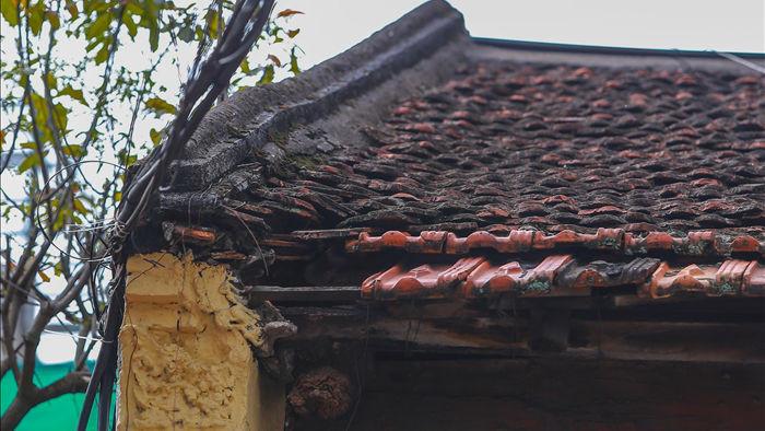 """Căn nhà cổ trăm tuổi làm từ gỗ lim, có kiến trúc """"độc nhất"""" phố cổ Hà Nội - 5"""