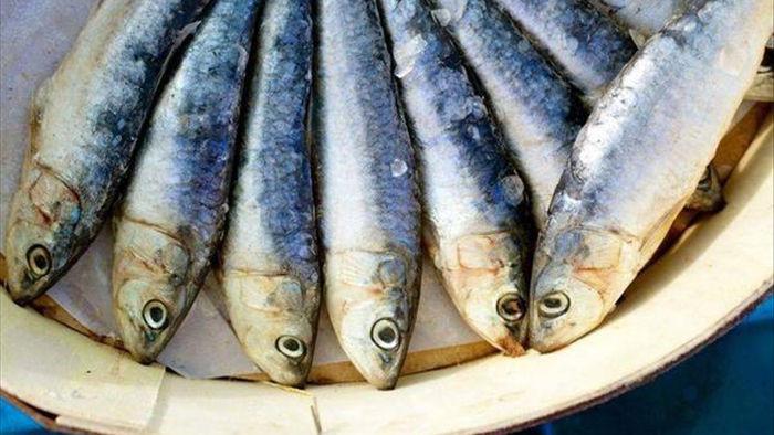4 loại cá trẻ càng ăn càng tăng IQ, 5 loại ăn vào dễ hỏng não lại độc chết người - 5