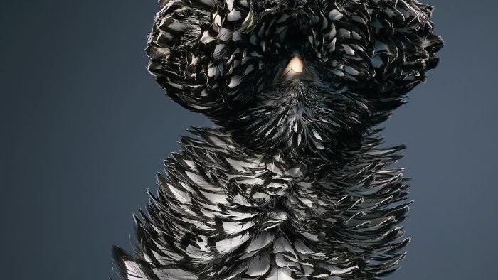 Chân dung các loài chim quý hiếm, tuy đơn giản nhưng lại tuyệt đẹp - Ảnh 5.