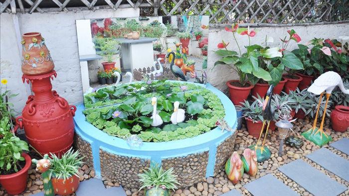 Tận dụng giày cũ, chai nhựa trồng cây người phụ nữ có khu vườn tuyệt đẹp - 5