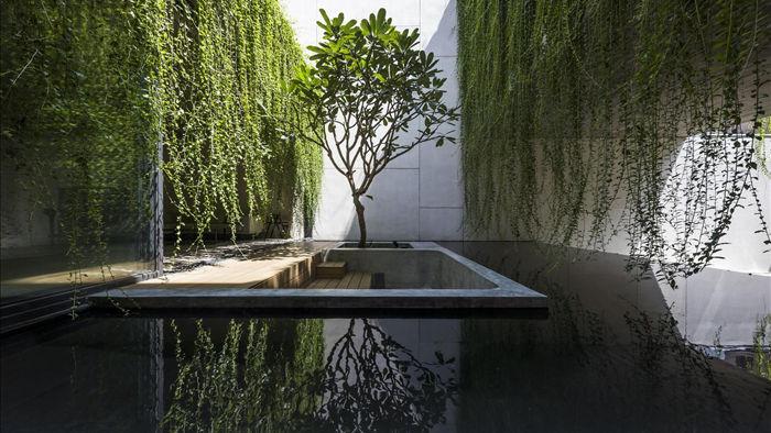 Ngỡ ngàng với biệt thự đẹp như công viên nhờ vườn cây xanh mát  - 5
