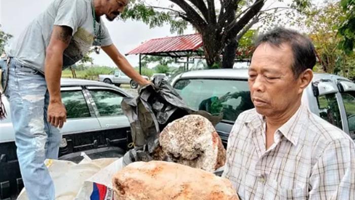 Ngư dân Thái Lan nhặt được chất nôn của cá voi trị giá hơn 74 tỷ đồng - 2