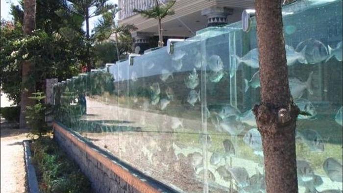 Ấn tượng tường rào bằng bể cá bao quanh biệt thự của doanh nhân giàu có - 7