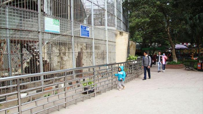 Những con vật co ro nép mình trong vườn bách thú Thủ Lệ vì lạnh - 1