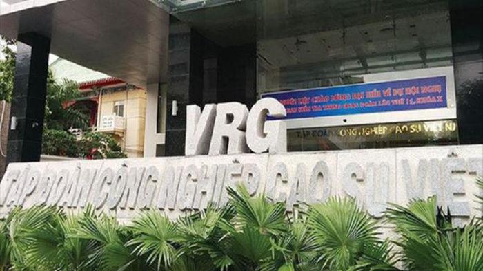 Cổ phiếu đại gia cao su Việt tăng phi mã bất chấp COVID-19 - 1