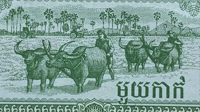 300 nghìn đồng tờ tiền 2 USD trâu vàng vẫn khó mua