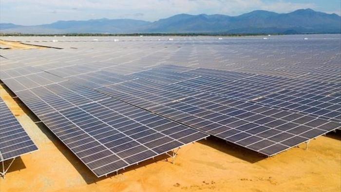 Xuất hiện dự án nông nghiệp 'trá hình' làm điện mặt trời: EVN nói gì? - 1