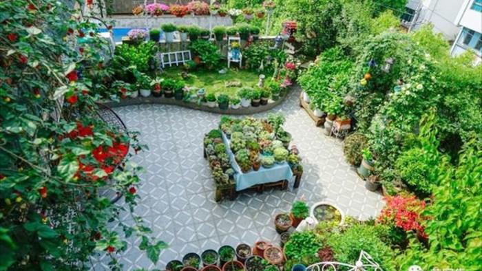 Trồng hoa trên sân thượng, cô gái tạo ra khu vườn cổ tích vạn người mê - 1