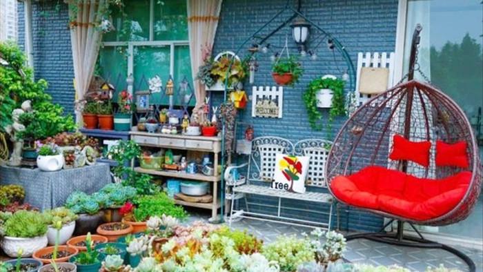 Trồng hoa trên sân thượng, cô gái tạo ra khu vườn cổ tích vạn người mê - 8