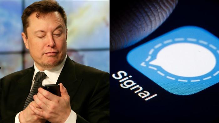 E ngại Facebook, nhiều yếu nhân tiếp sức Signal và Telegram