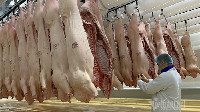 Nhập nửa triệu con lợn Thái Lan, mùa Tết giá thịt vẫn ồ ạt tăng
