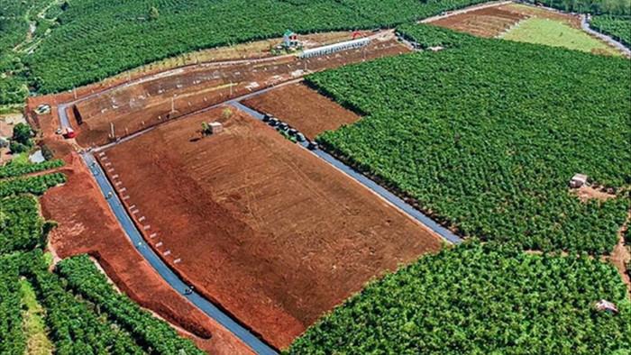 'Loạn' phân lô bán nền, Lâm Đồng ra quy định mới về tách thửa đất