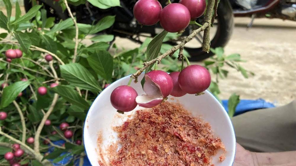Những loại trái cây Việt Nam tên lạ hoắc, ai biết chắc đã có tuổi thơ quê nhà-7