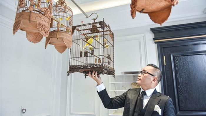 Săn lùng hoàng mào chơi Tết, đại gia thuê hẳn xe riêng đón chim quý về nhà - 1