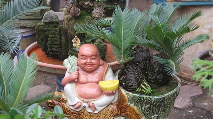 Chán mai, ngán đào, nhiều thượng đế săn lùng mua vạn tuế bonsai chơi Tết - 1