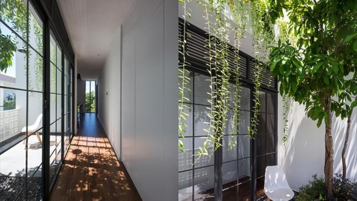 Cuộc sống vui thú điền viên trong căn nhà 3 tầng ngập cây xanh ở Nha Trang - 11