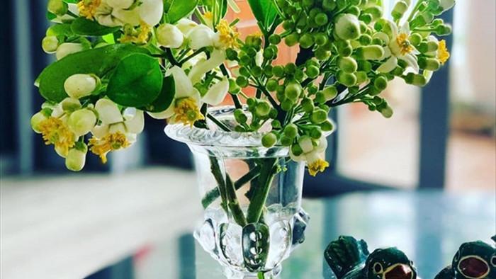 Đón rằm tháng Giêng, người Hà Nội lại tấp nập mua hoa bưởi - 1